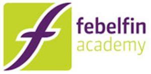 Febelgin Academy